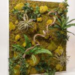 mosschilderij nature met planten en hout erin verwerkt