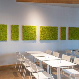 Schilderijen Spring Green