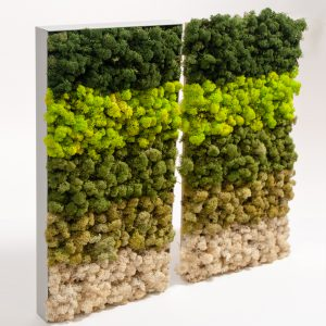 basiskleuren rendiermos in alumium frame