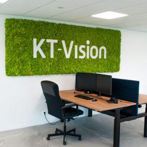 kt-vision