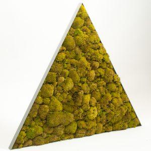 Mosschilderij driehoek bolmos