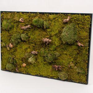 Mosschilderij forest zwarte lijst