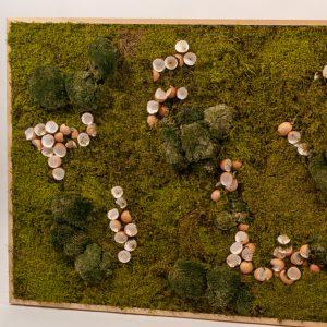 Mosschilderij Nature met eierschalen