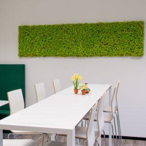 Mosschilderij rendiermos springgreen
