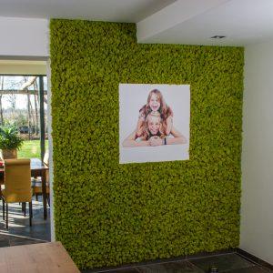 Moswand springgreen met afbeelding