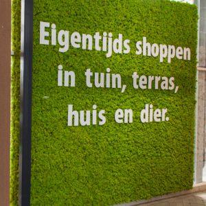 Rendiermos-springgreen-letters