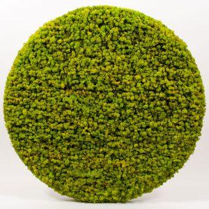Springgreen rond