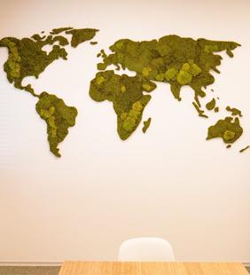 wereldkaart van mos op kantoor