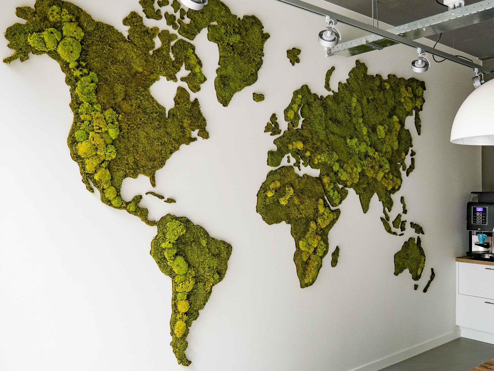 wereldkaart van mos tegen muur