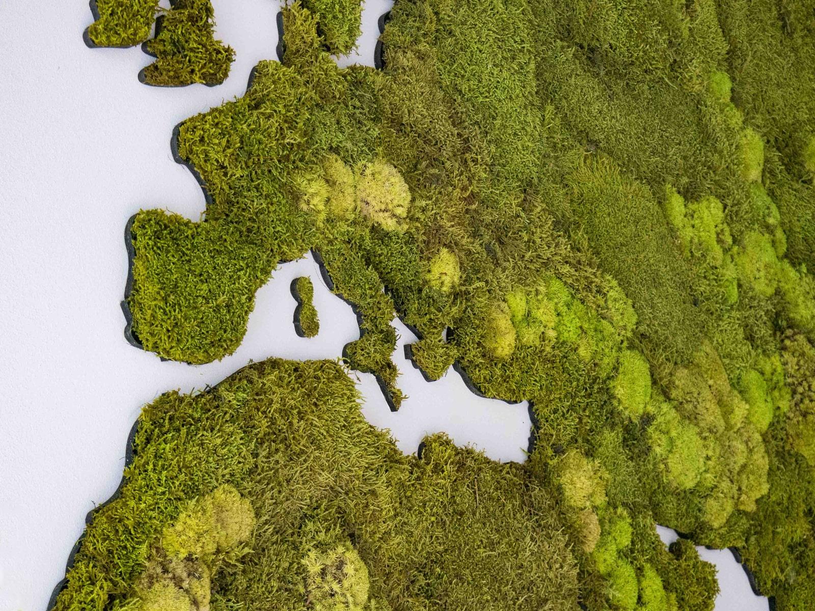detail van wereldkaart van mos