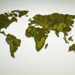 wereldkaart van mos