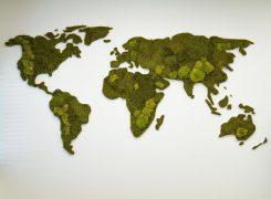 Wereldkaart van mos | moswand.eu