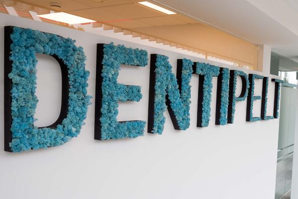 Referentie moswand DentiPelt