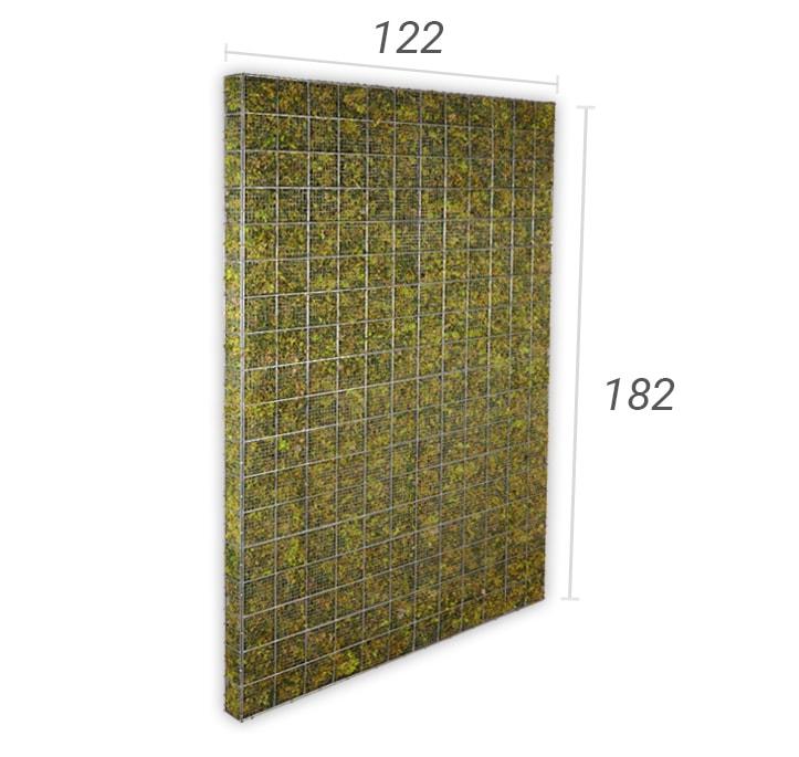 moskorf 122 x 182 cm