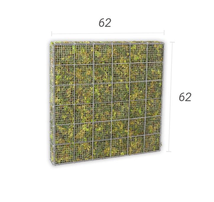 moskorf 62 x 62 cm
