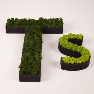 Doosletters zwart MDF moss green spring green
