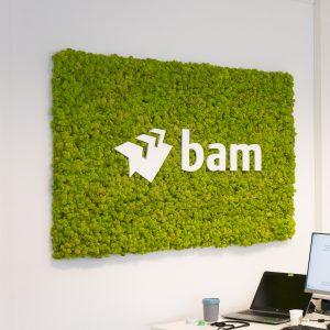 Mosschilderij rendiermos Spring Green logo BAM