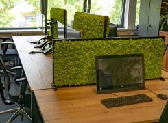 Akoestisch bureauscherm van mos: natuur op kantoor. Sfeervol & veilig werken