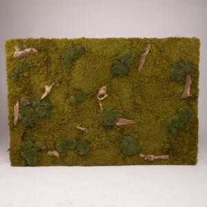 Mosschilderij 120 x 80 cm. MossMix 'Forest'