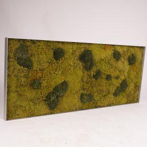 Mosschilderij 136,5×56,5 cm. MossMix 'Nature'