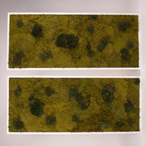 Mosschilderij 140×60 cm. MossMix 'Nature' (prijs per stuk)