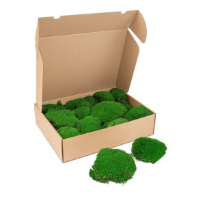 Kleine doos Bolmos'ForestGreen'