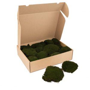 Kleine doos Bolmos'MossGreen'