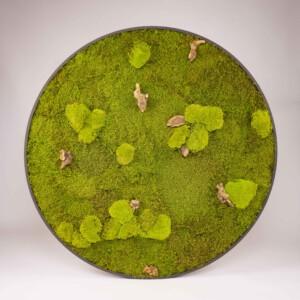 Rond mosschilderij met SpringGreen plat- en bolmos en stukjes stronk in zwarte mdf lijst