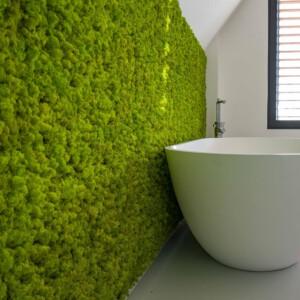 Moswand in badkamer van SpringGreen rendiermos