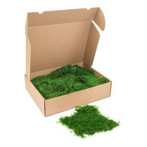 Kleine doos Platmos'ForestGreen'