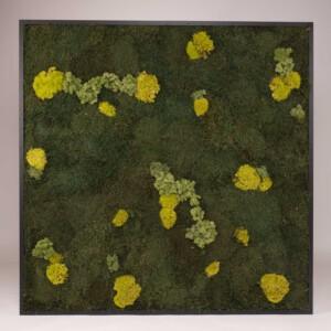 Mosschilderij 127 x 127 cm. MossMix 'Nature'