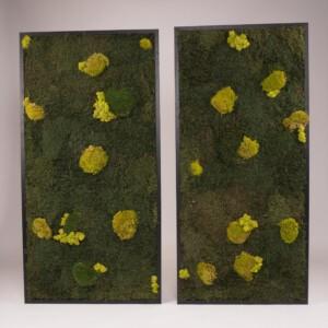 Mosschilderij 60 x 127 cm. MossMix 'Nature' (prijs per stuk)(linker schilderij is al verkocht).