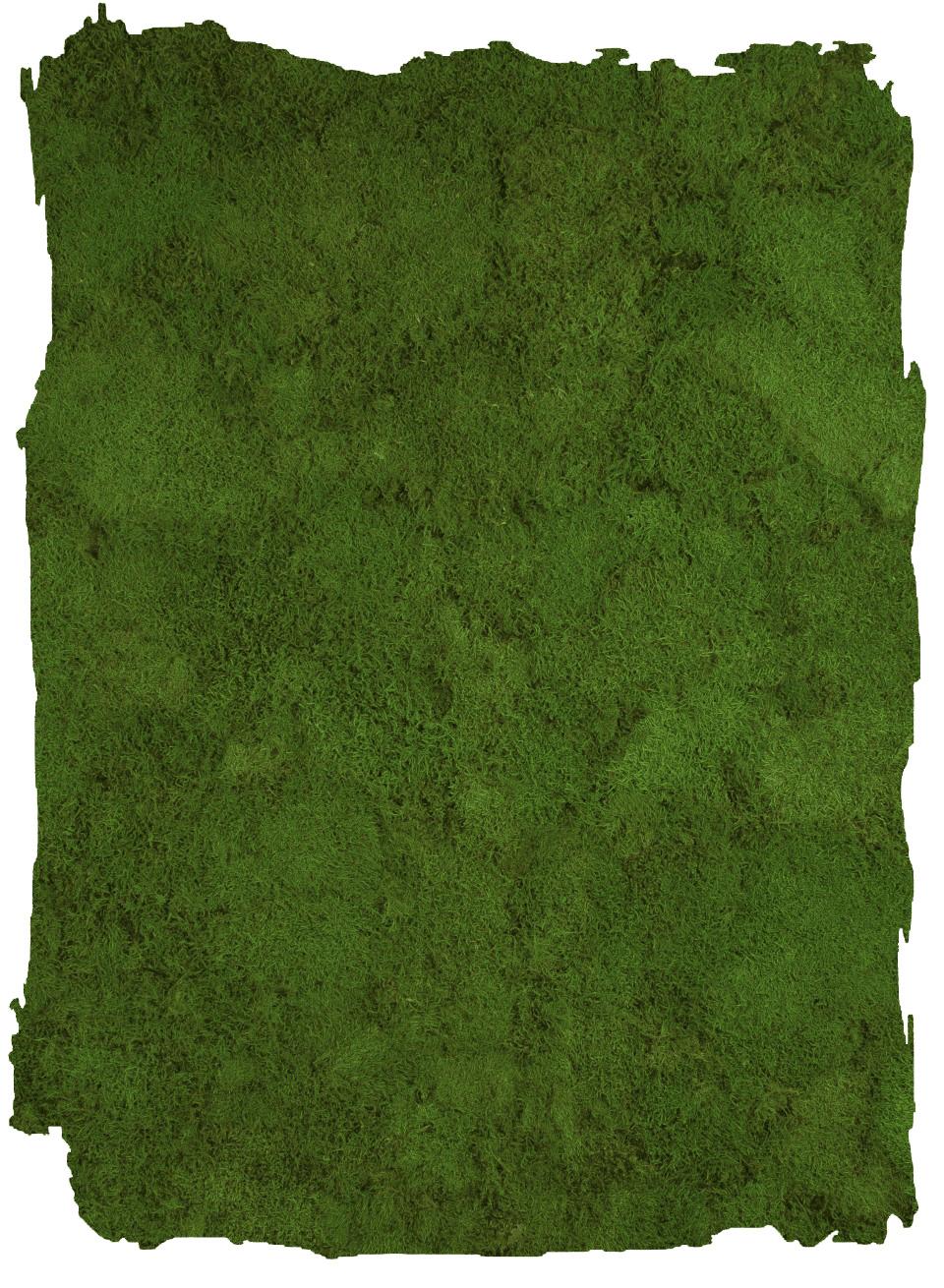Platmos Forest Green