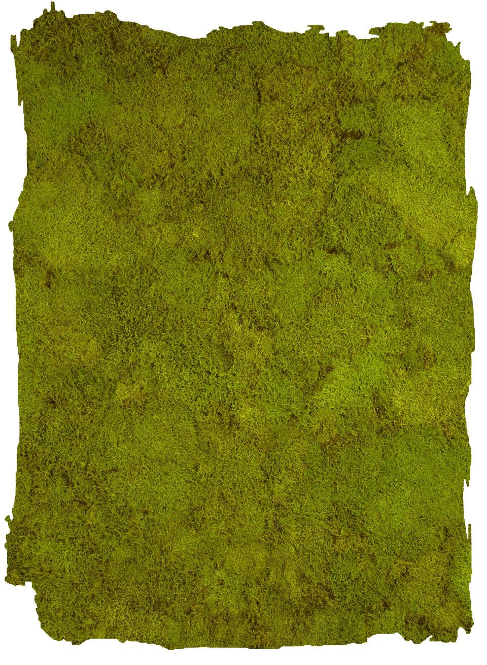 Platmos Spring Green