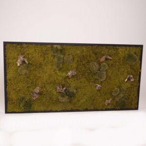 Mosschilderij 60×120 cm. 'Forest' zwarte houten lijst
