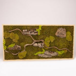 Mosschilderij 60×120 cm. 'Jungle' blank houten lijst