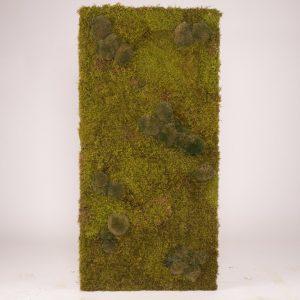 Mosschilderij 60×120 cm. 'Nature' mosrand afwerking