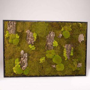 Mosschilderij 127,5×84,5cm (bxh). 'MossMix Jungle' A