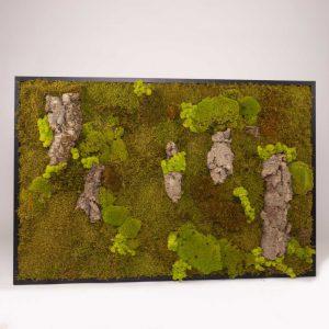 Mosschilderij 127,5×84,5cm (bxh). 'MossMix Jungle' B