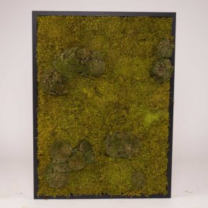 Mosschilderij 60×80 cm (bxh). MossMix 'Nature' D