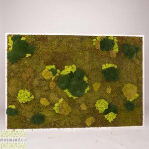 Mosschilderij 152×104 cm (bxh). MossMix 'Nature' met rendiermos